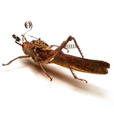 eletricbugs (9)