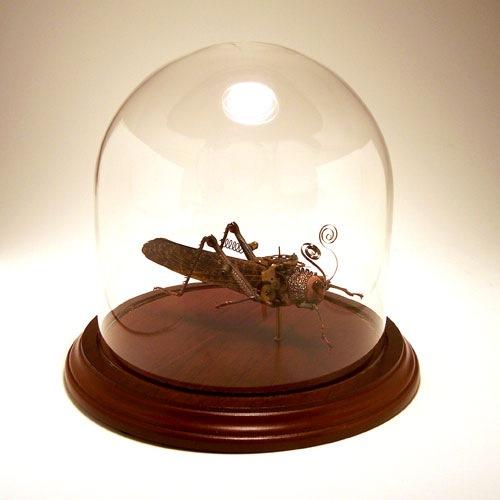 eletricbugs (20)