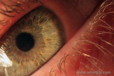 Beautiful-Eyes-amarjits-com (4)
