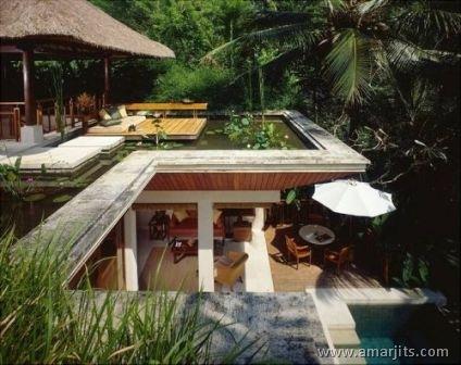 Jungle-Hotel-amarjits-com (3)