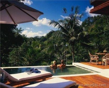 Jungle-Hotel-amarjits-com (5)