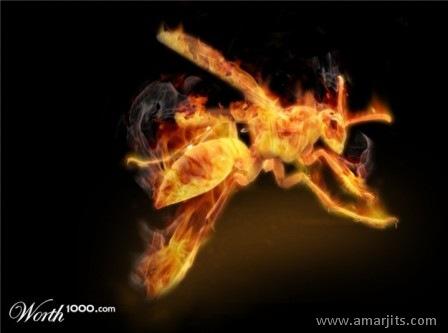 fire-amarjits-com (17)