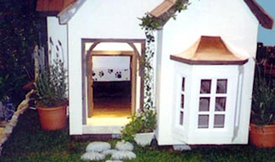 Dog-House-amarjits (13)