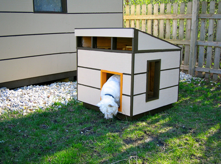Dog-House-amarjits (2)