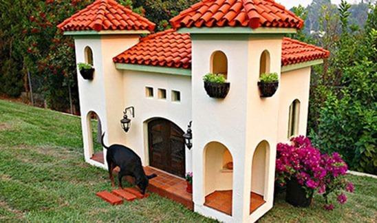 Dog-House-amarjits (8)