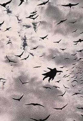 Quint Buchholz: The Flight