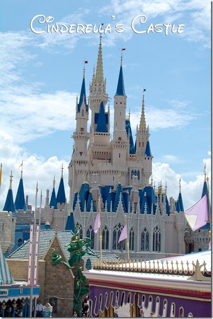 castle (1 of 1)