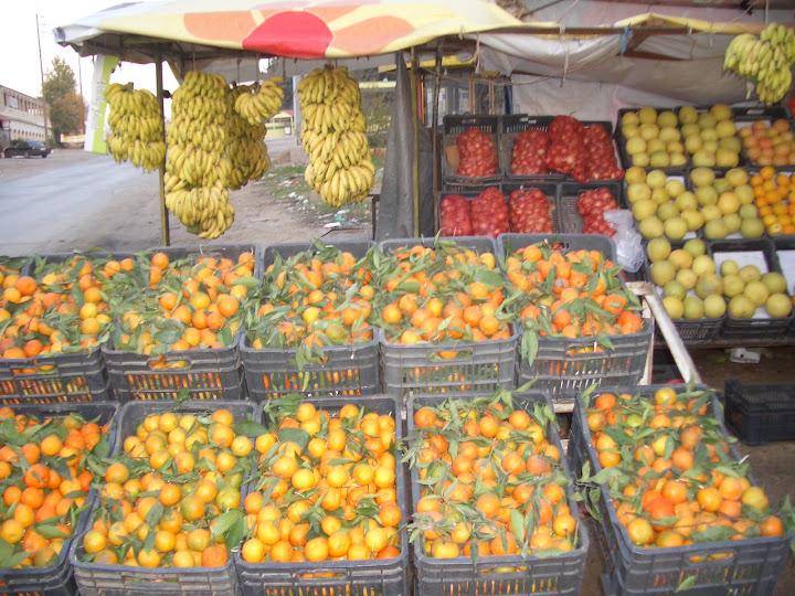 Экологически чистые фрукты. Долина Бекаа. Ливан. Фото Е. Есина