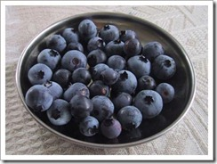 09182003_blueberries