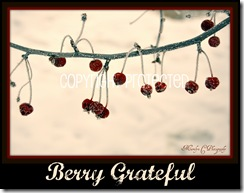 Berry Grateful CP