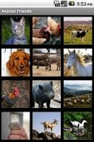 Screenshot of Animal Friends