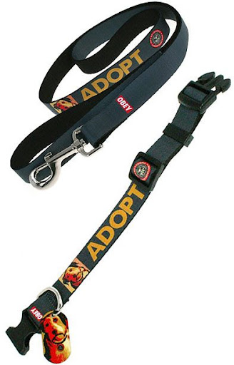 ADOPT dog collar and leash