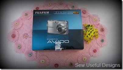 camera and frog
