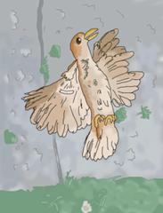 Sparrow at its' last vestiges of life.
