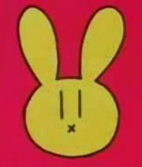 el conejillo distintivo de la autora 2