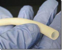 Vena Humana creada por bioingenieria de 6 mm antes del implante