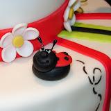 Lady Bug Cake 2-20-10 035.jpg