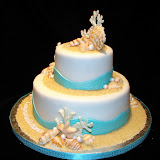 Turquoise Seashell Cake 3-7-10 039.jpg