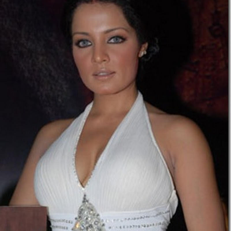 Celina Jaitley virgin till marriage