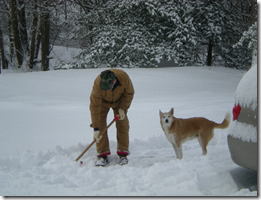bob and daisy shoveling snow