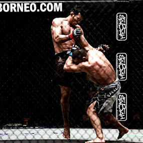 One Fight Championship by Barry Allan - Sports & Fitness Other Sports