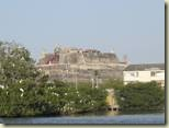 Cartagena River Cruise 1