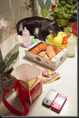 Katten och Skålen