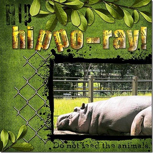 Hip Hippo-ray!