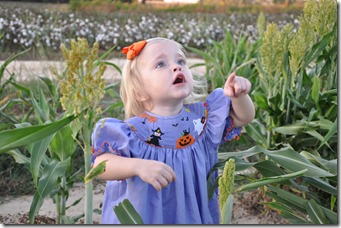 grain saugrum and halloween dress 101510 (6)