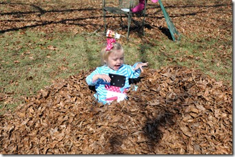 loving the leaf pile 120310 (1)
