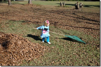 loving the leaf pile 120310 (32)