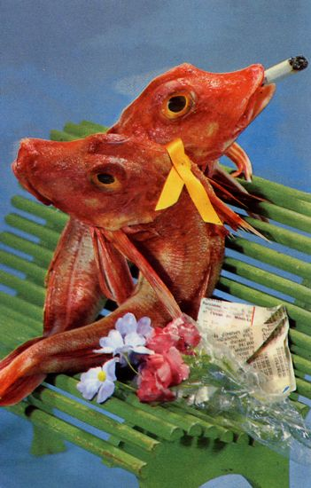 Cartes Postales Pop et  Kitsch des années 50, 70 et 70 - Pop and kitsch vintage postcards from the fifties, the sixties and the seventies : Poissons fumants / Smoking fishes