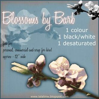 bderksen_blossom_prev