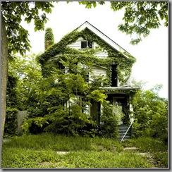 feral house det1