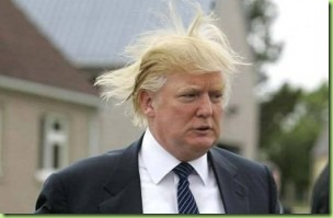 trump the donald's hair
