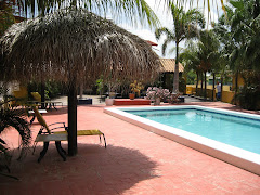 Zwembad bij Yachtclub Apartments