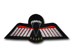 wing%20d