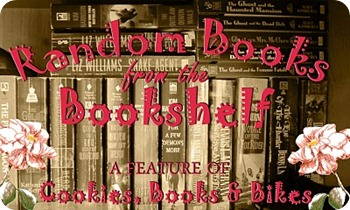 randombooksfromthebookshelfbanner