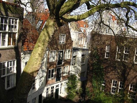 Imagini Olanda: Hotel 83 Amsterdam pe geam.JPG