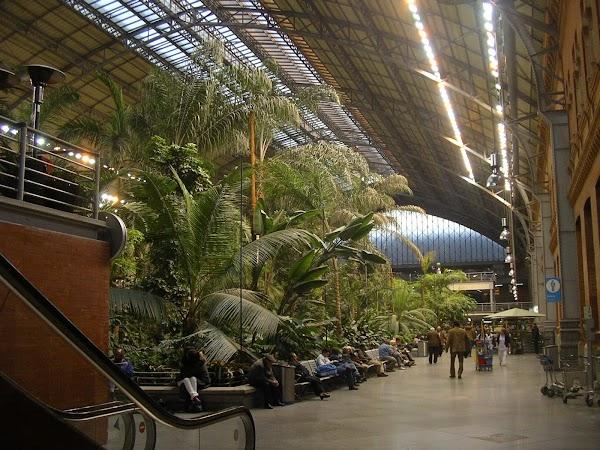Imagini Spania: Estacion Atocha.JPG