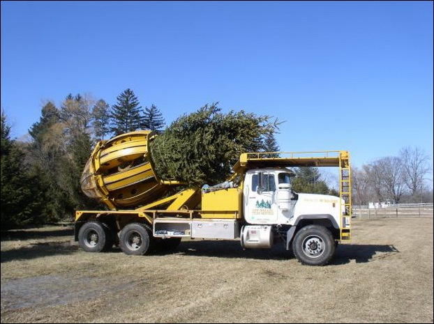 Tree Spade and Transporter 15