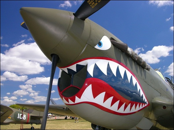 Aircraft Nose Art 09