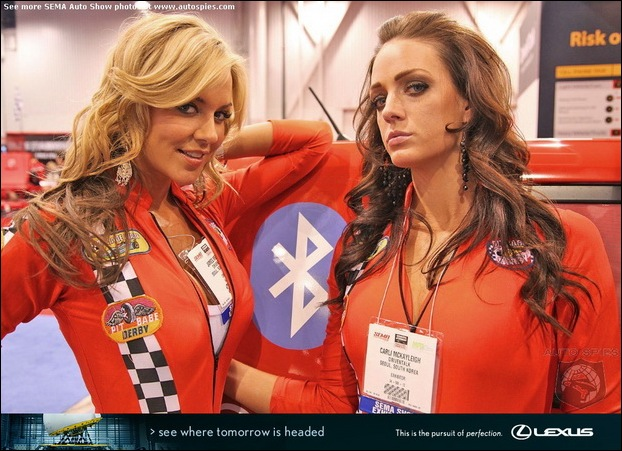 The Ladies Of SEMA17
