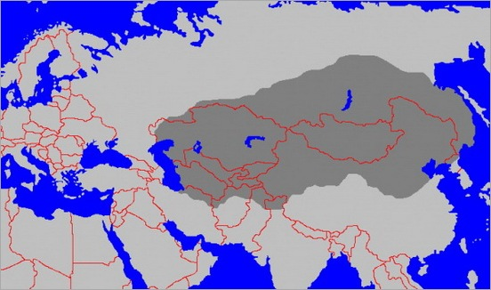 4. Mongol Empire