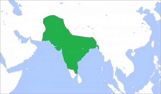 3. Mughal Empire