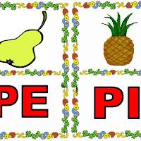 PE-PI.jpg