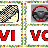VI-VO.jpg