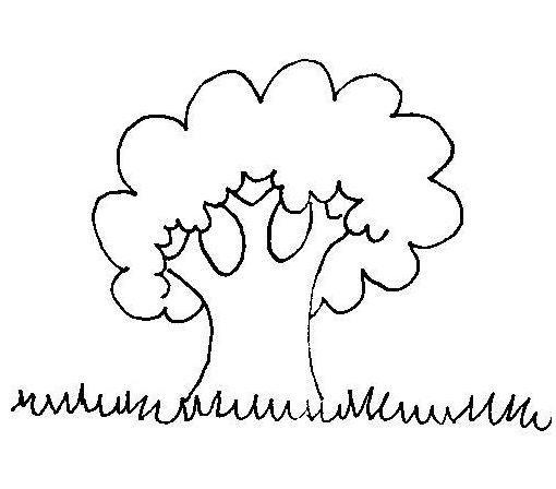 Dibujos de arboles para pintar for Un arbol con todas sus partes