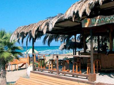 http://lh6.ggpht.com/_Dg6pp1hHfn8/SJKbeYnyxMI/AAAAAAAACJo/W4SRUjKyBmI/mango-beach-bar2.jpg
