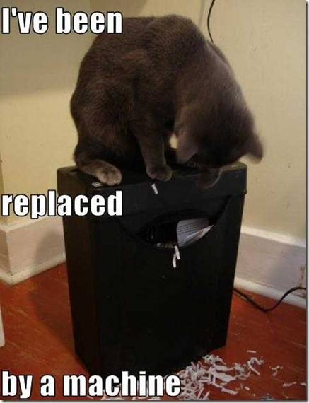 Pictures of Funny Animals (funny cat) - Poor Kitty...You Has Beed Replaced By A Machine!